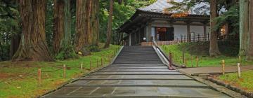 Hotels in de buurt van tempel Chusonji