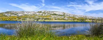 Hotell nära Asinara nationalpark