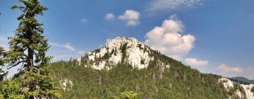 Hotels near Northern Velebit National Park