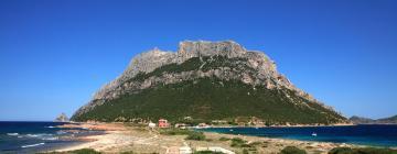 Hotels near Isola di Tavolara