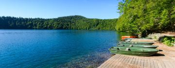 Hotels near Pavin Lake