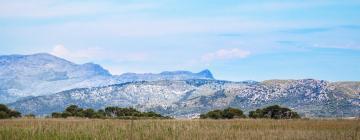Hotels in de buurt van Natuurpark S'Albufera de Mallorca