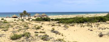 Hoteles cerca de Playa El Carabassí