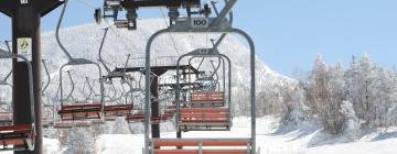 Hotels near La Petite Mauselaine Ski Lift