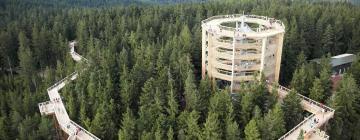 Hotels near Lipno Treetop Walkway