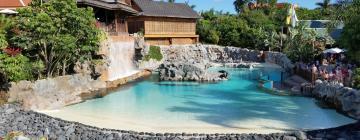 Hoteles cerca de Parque Acuático Siam Park