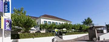Zoo Zürich: Hotels in der Nähe