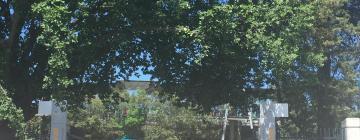 Hotéis perto de: Manuka Oval