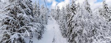Подъемник Смолянские озера - Снежанка: отели поблизости