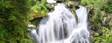 Hotels near Triberg Waterfalls