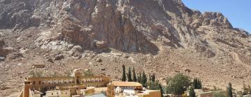 Hotels near Mount Sinai
