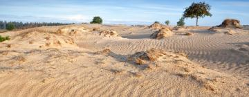Hotels near National Park Drents-Friese Wold