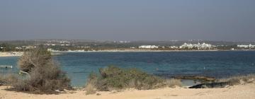 Hotels near Punda Beach Club