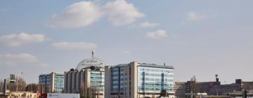 Hotels in de buurt van ziekenhuis Ospedale San Raffaele