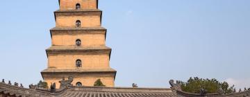 Большая пагода диких гусей: отели поблизости