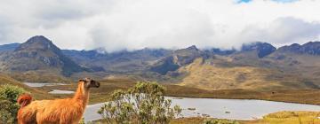 Hotéis perto de: Parque Nacional de Cajas