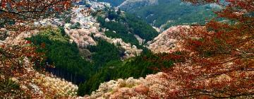 Hotels near Mount Yoshino