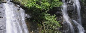 Hotels near Anna Ruby Falls