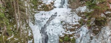 Kamienczyka Waterfall: hotel