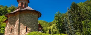 Hotels near Prislop Monastery