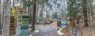 Hotels near Dinopark