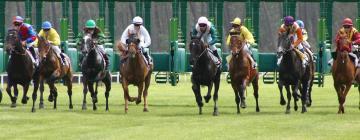 Hotéis perto de: Flemington Racecourse