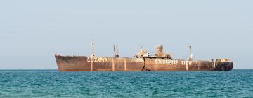 Hotels near Costinesti Shipwreck