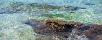 Spiaggia di Baia Verde: hotel