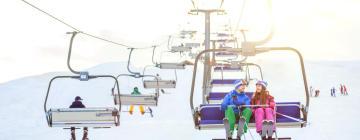 Hotels near Corralco Ski Centre