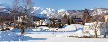Hotels near Hakuba Goryu Ski Resort