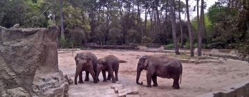 Hôtels près de: Zoo de La Palmyre