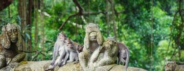Hôtels près de: Forêt des singes d'Ubud