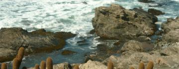 Hoteles cerca de Punta de Lobos