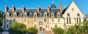 Hôtels près de: Château de Blois
