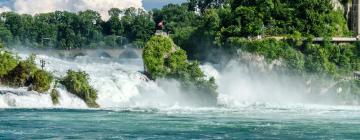 Hotels near Rhine Falls