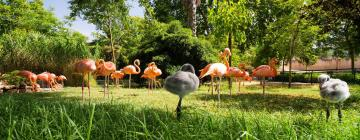 Hotels near Lisbon Zoo