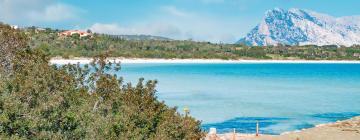 Hotell nära Cala Brandinchi-stranden