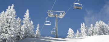 Hotels near Grizzly Ski Lift