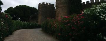 Hotels near Vila Viçosa Castle