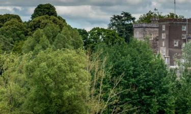 Hotels near Powderham Castle
