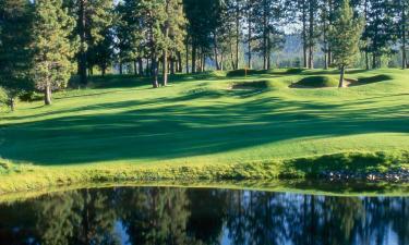 Hotels near Edgewood Tahoe Golf Course
