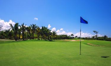 Hotels near Playa Dorada