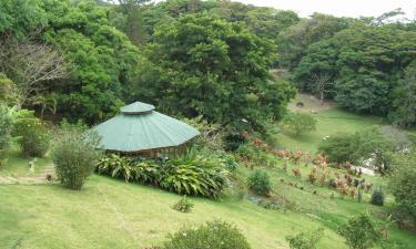 Hôtels près de: Réserve biologique de Monteverde