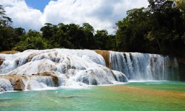 Hotels near Agua Azul Waterfalls