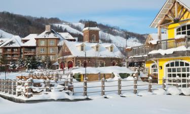 Hotéis perto de: Blue Mountain Ski Resort