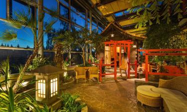 Hotels near Eibenstock bathing gardens