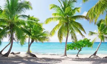 Остров Каталина: отели поблизости