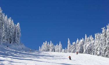 Hotels near Boí Taüll Ski Resort