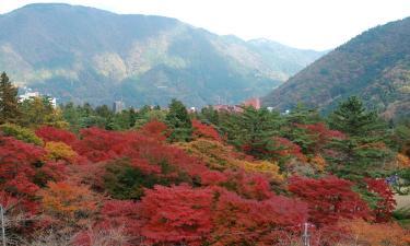 Hotels near Hakone Kowakien Yunessun