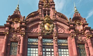 Universität Heidelberg: Hotels in der Nähe